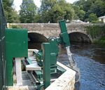 The River Tavy: Fish Screen
